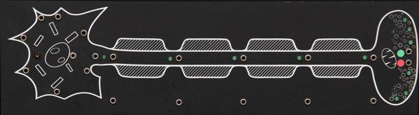 Demonstration neuron module